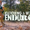 CATCHING A WILD ENDURO